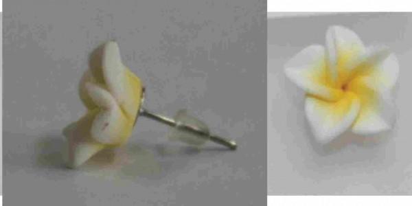 Blüten Ohrstecker weiß -gelb